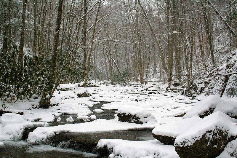 File:Hillscreek3 - West Virginia - ForestWander.jpg