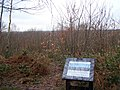 Holly Hill Viewpoint - geograph.org.uk - 1160550.jpg