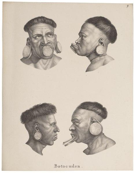 File:Homo sapiens - Botokude-indiaan, Brazilië - 1700-1880 - Print - Iconographia Zoologica - Special Collections University of Amsterdam - UBA01 IZ19500206.tif