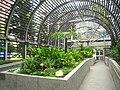 Hong Kong Botanical Gardens - IMG 9661.JPG