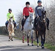 Equestrianism - Wikipedia