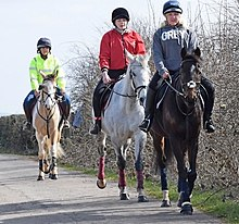The saddle club magyarul online dating