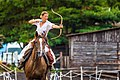 Horseback Archery (195889659).jpeg