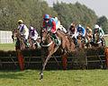 Horses racing (2881579529).jpg