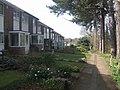 Housing alongside the Monarch's Way - geograph.org.uk - 1213937.jpg