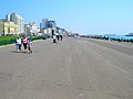 Hove Sea Wall - geograph.org.uk - 455907.jpg