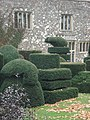 How to have fun with a bush. - geograph.org.uk - 1307693.jpg