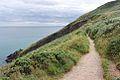 Howth Cliff Path Loop.jpg