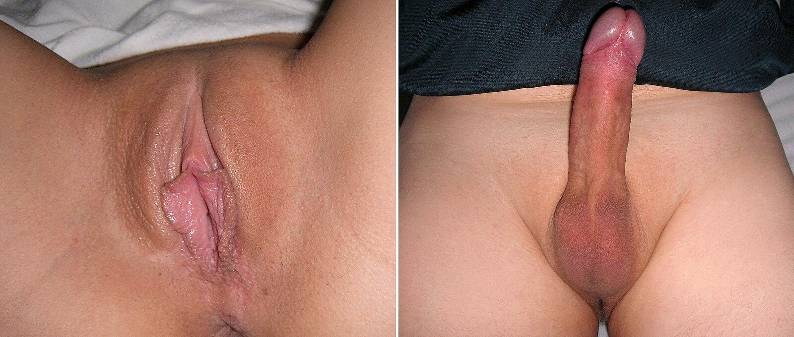 Женщина показывает и комментирует свои гениталии видео, показать порно ролики шлюх большие сиськи