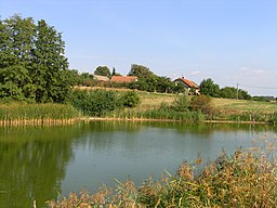 Hvozdnice, south pond.jpg