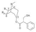 Hydroxyhyoscyamine.png