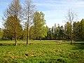 Imanta 2011. gada pavasari - panoramio (7).jpg
