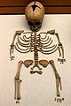 Inhumación infantil (6 meses) sIVaC.JPG