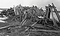 Inupiat ruins on Barter Island (37148).jpg