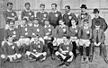 Ireland rugby team 1898.jpg