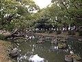 Iris pond of Kashii Shrine.jpg