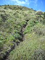 Isabeloca short cut^ - panoramio.jpg
