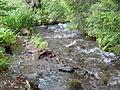 Ivó pataka, Hargita - 2013.06.17 (7).JPG