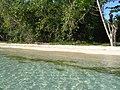 Jamaica 2006 Bloddy Bay - panoramio (3).jpg