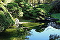 Japanese Tea Garden (San Francisco) - DSC00221.JPG