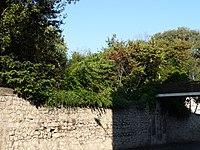 Jardin de la Reine et bâtiments de l