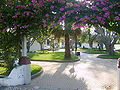 Jardim da nossa sinhora dos anjos-Lourinhã.JPG