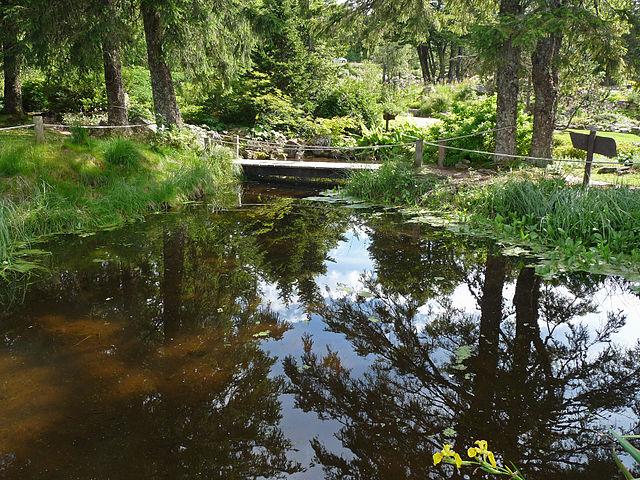 Fichier jardin d 39 altitude du haut chitelet plan d 39 - Jardin d altitude du haut chitelet ...
