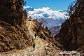 Jeep trail in Mustang.jpg