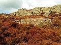 Jointed Rocks on Screel - geograph.org.uk - 1490855.jpg