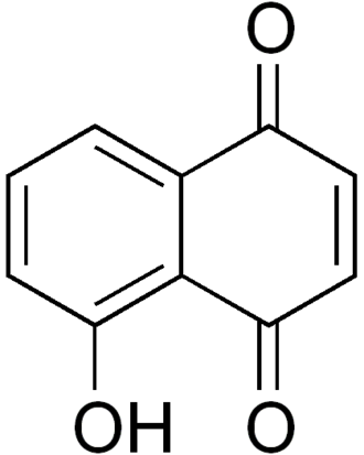Naphthoquinone - Juglone, a compound found in black walnut