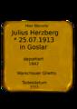 Julius Herzberg.png