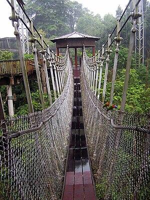 Simple suspension bridge -  Jurong Bird Park -rope bridge
