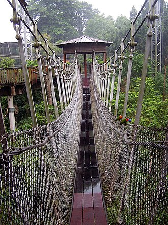 Simple suspension bridge - Jurong Bird Park -rope bridge
