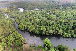 Kali Tiger Reserve - Image: Kali river