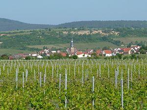 Kallstadt - Image: Kallstadt 21