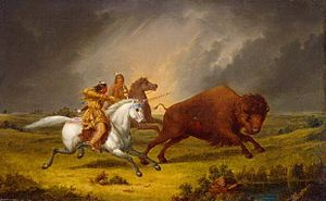 "Plains Indians - ""Assiniboine hunting buffalo"", painting by Paul Kane"