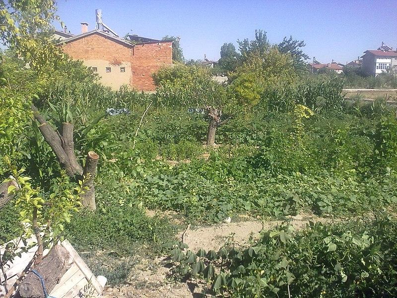 File:Kara Malikanesi - panoramio (2).jpg