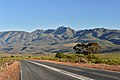 Karoo Landscape, Eastern Cape, South Africa (20324327638).jpg
