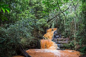 Karura Forest - Karura Forest, Waterfall. The water is orange during the rainy season