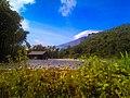Kebun dan gunung slamet.jpg