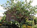 Kerklaan 45 Hilversum.jpg