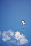 Kite (9521513087).jpg