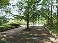 Kobe Municipal Arboretum in 2013-6-22 No,39.JPG
