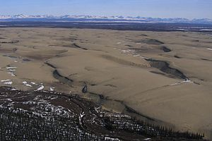 English: Kobuk Dunes in Kobuk Valey National P...
