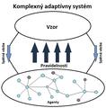 Komplexny adaptiny system schema.png