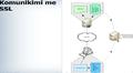 Komunikimi me SSL2.png