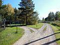 Kungursky District, Perm Krai, Russia - panoramio (250).jpg