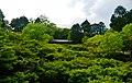 Kyoto Tofuku-ji Garten 4.jpg