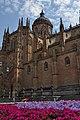 La Catedral de Salamanca (4851994394).jpg