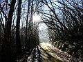 La Gonterie-Boulouneix route long Belaygue.JPG
